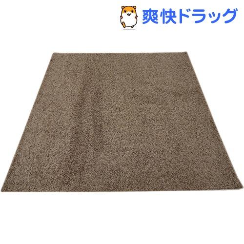 イケヒコ シャンゼリゼ ラグマット 190*190cm ベージュ 抗菌 防ダニ 防臭 防炎(1枚入)