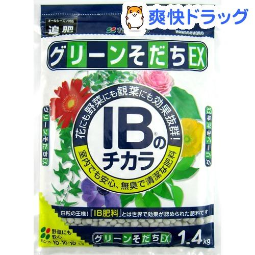 IBのチカラ グリーンそだちEX IBのチカラ グリーンそだちEX(1.4kg)