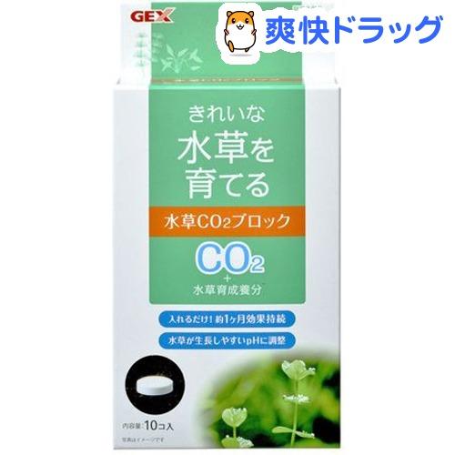 水草一番 大規模セール CO2タブレット 百貨店 10粒