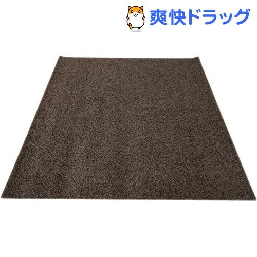 イケヒコ シャンゼリゼ ラグマット 190*190cm ブラウン 抗菌 防ダニ 防臭 防炎(1枚入)