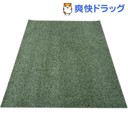 イケヒコ シャンゼリゼ ラグマット 190*190cm グリーン 抗菌 防ダニ 防臭 防炎(1枚入)