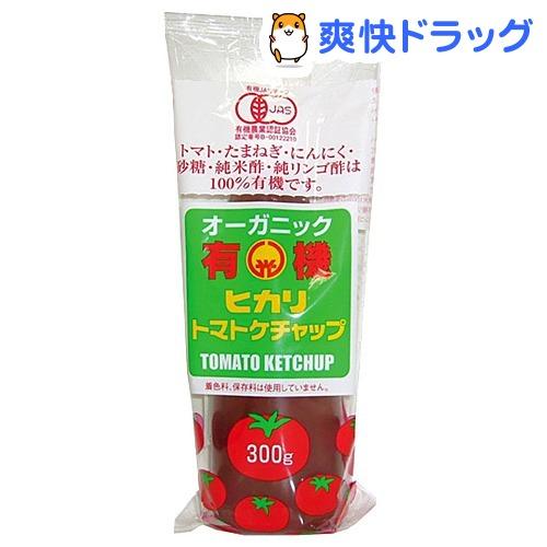 光食品 有機トマトケチャップ チューブ 光食品 有機トマトケチャップ チューブ(300g)