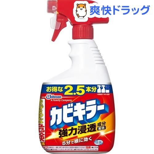 お風呂の頑固な黒カビ対策に!カビ取り洗剤、ジェル、カビ予防グッズのおすすめは?