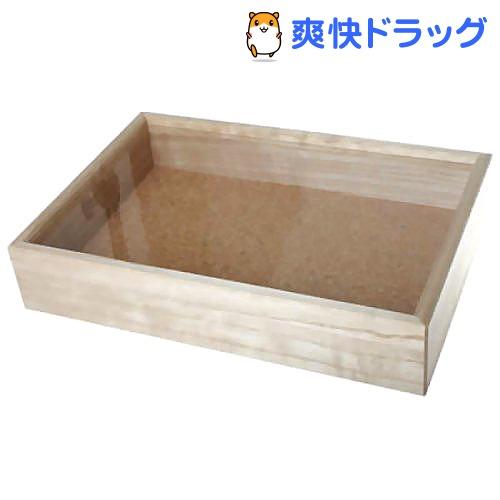 志賀昆虫(シガコン) インロー硝子蓋式標本箱 中型(1コ入)【志賀昆虫(シガコン)】