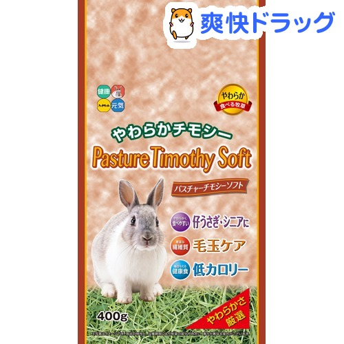 パスチャーチモシーソフト 5☆好評 400g 贈物