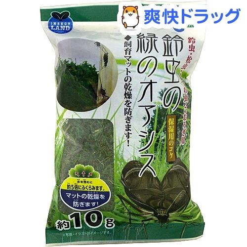インセクトランド 鈴虫の緑のオアシス(約10g)【インセクトランド】