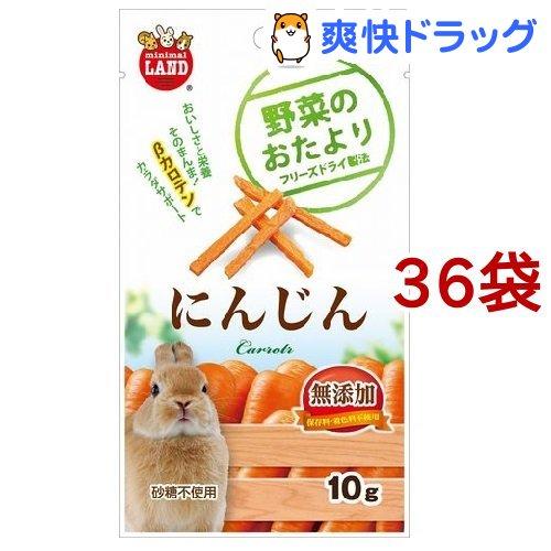 野菜のおたより にんじん(10g*36コセット)