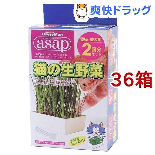 キャティーマン アサップ(asap) 猫の生野菜 2回分(1箱*36コセット)【アサップ(asap)】