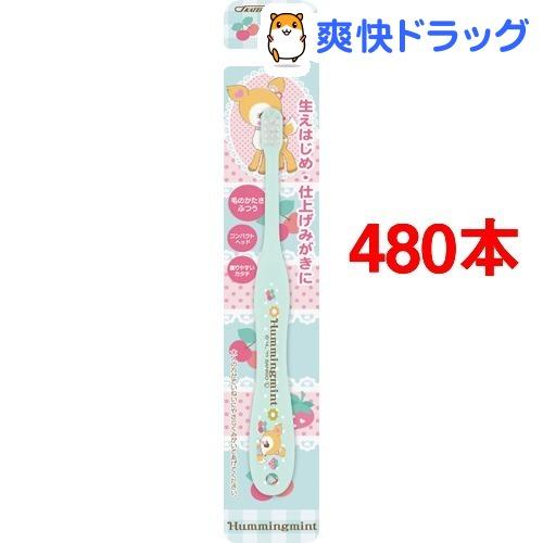 子ども歯ブラシ 乳児用 ハミングミント TB4N(480本セット)