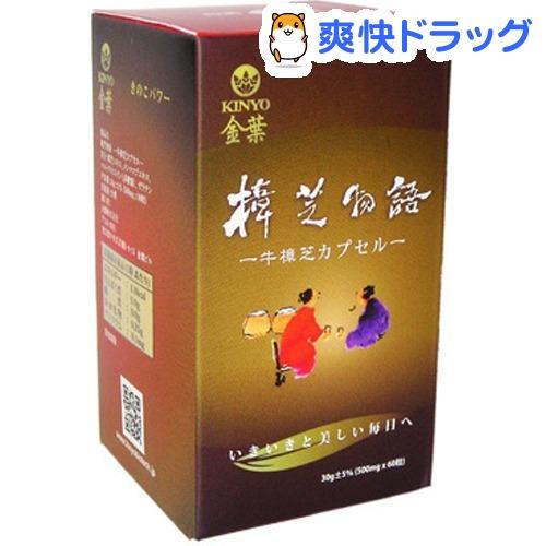 金葉 樟芝物語 牛樟芝 カプセル(60粒)【金葉(KINYO)】【送料無料】