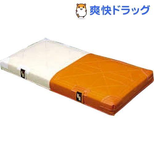 エスエスケイ ソフトボール用ダブルベース SSK-YM9W(1セット)【エスエスケイ】