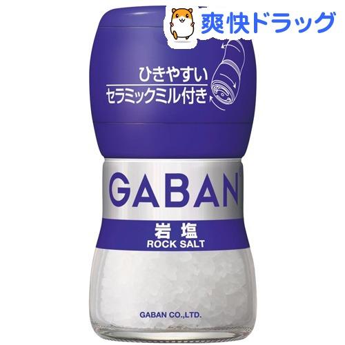 未使用 受賞店 ギャバン GABAN 40g ミル付き岩塩