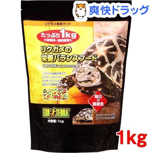 エキゾテラ 使い勝手の良い 爆買い送料無料 リクガメの栄養バランスフード 1kg