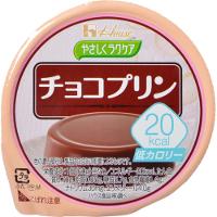 【10000円以上で本州・四国送料無料】ハウス食品 やさしくラクケア 20kcal チョコプリン 60g