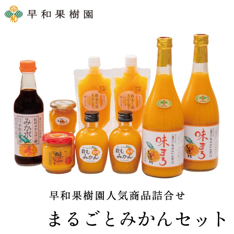 【N】 まるごとみかんセット  みかんジュース ゼリー スムージー ポン酢 詰め合わせ 内祝 御祝 早和果樹園