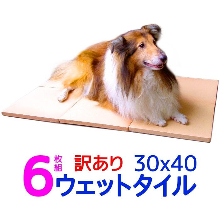 訳あり割引 6枚組 クールワン ウェットタイル30×40cm 6枚組 1.6cm厚 脚付冷却マット 全犬種・猫OK ひんやりグッズ マット 暑さ対策 犬 冷たい ひんやりクール マット 犬用品 夏対策 屋外でも冷たい ペットの夏用ベッド