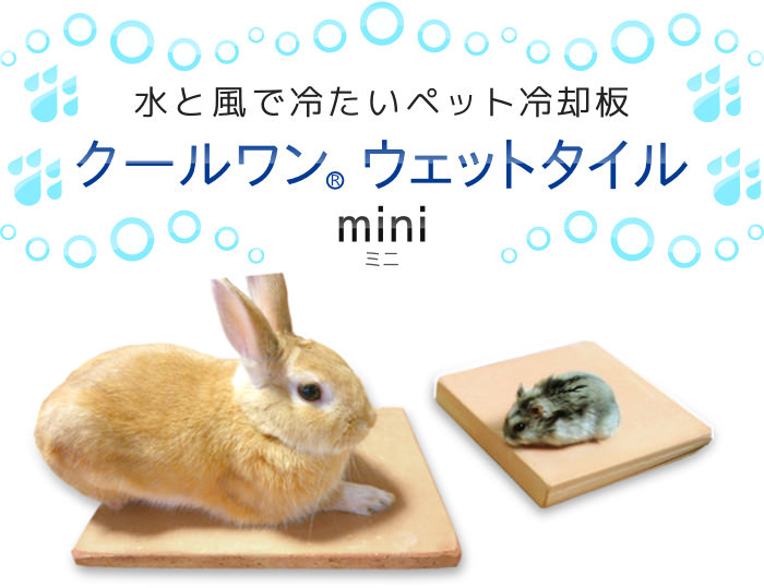 Stock as long as it is cool wet tile mini 20 x 30 no USAS size water enters the cage only to cold made pets cool tile mat rabbit ferret. Pleasant exhilaration on the brink what do heat against Matt hehe summer's heat wave in this engagement! Patent regis