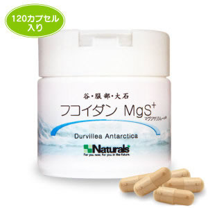 【smtb-MS】谷・大石・服部 フコイダン MgS+(120カプセル入り)送料無料