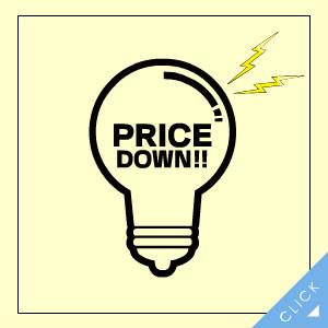 Panasonic パナソニック 工事必要 天井直付型LED非常用器具 一般型 30分間 非常灯用ハロゲン電球13形相当 昼白色 NNFB93006J