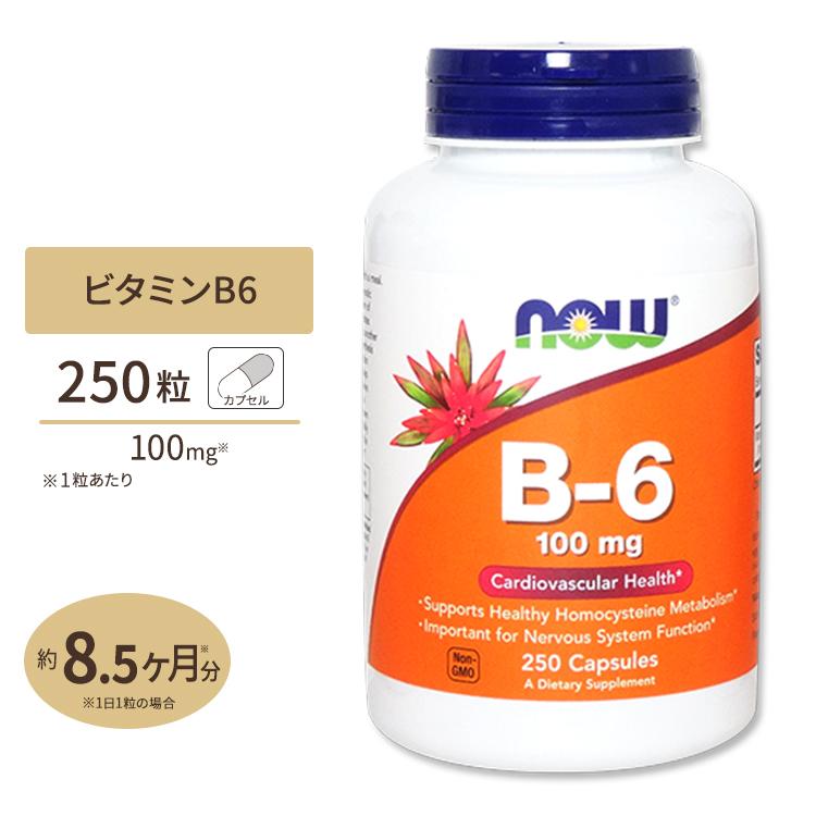 ビタミンB6 100mg 250粒 NOW 売り込み Foods 捧呈 ナウフーズ
