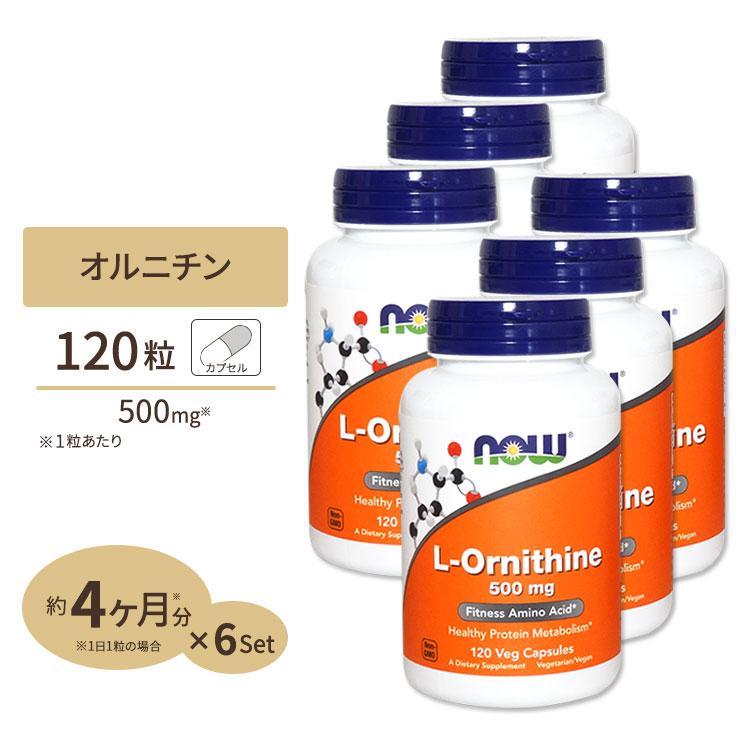 6個セット L-オルニチン 500mg 120粒 NOW Foods(ナウフーズ)