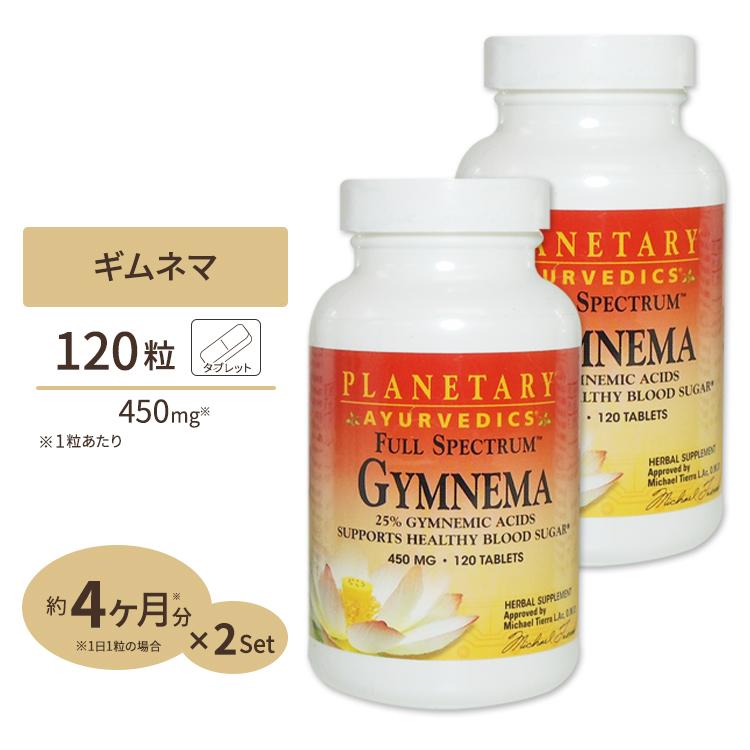 ギムネマ(ギムネマ酸25%) 450mg 120粒 [2個セット]美容 ギムネマエキス配合
