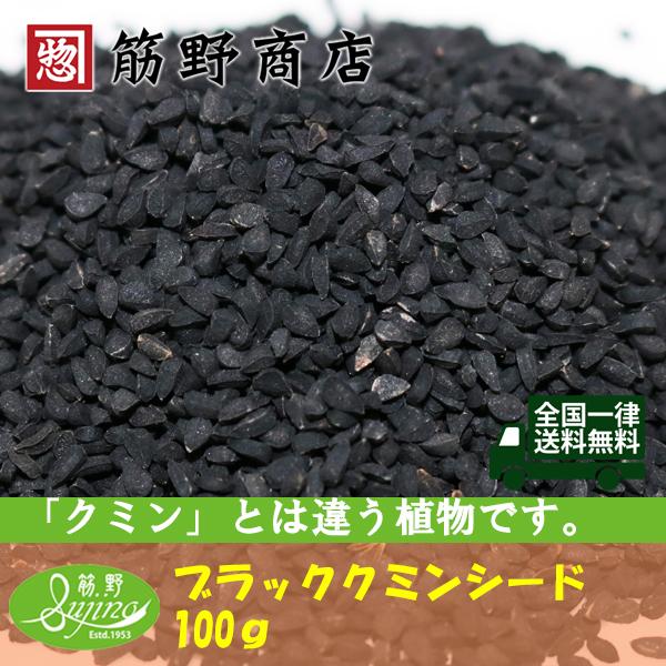 クミンシードの珍種で甘い香りが特徴です ブラッククミンシード 100g インド産 大規模セール 公式サイト スパイス 送料無料 スパイスカレー ポイント消化