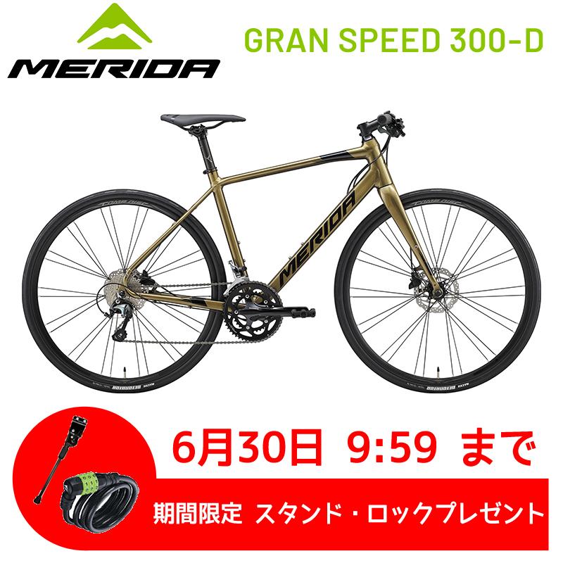 メリダ グランスピード300-D 2020 MERIDA GRAN SPEED 300-D[SPOKE-NET]