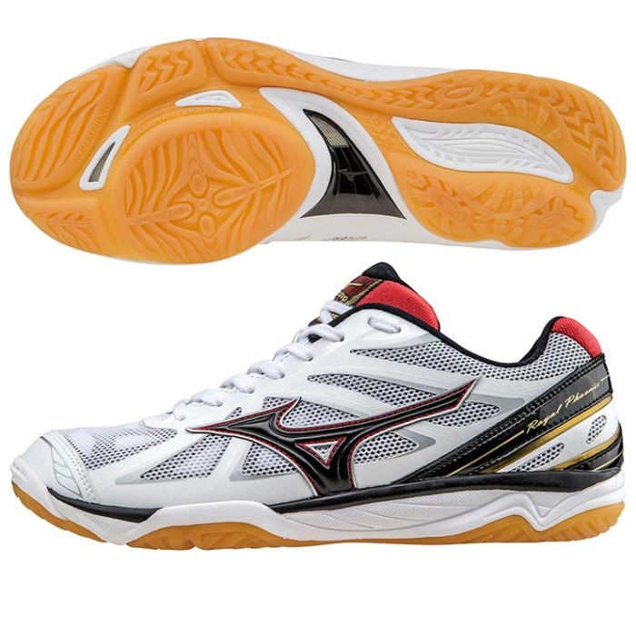 MIZUNO Mizuno Volleyball Shoes ROYAL PHOENIX Royal Phoenix v1ga1730