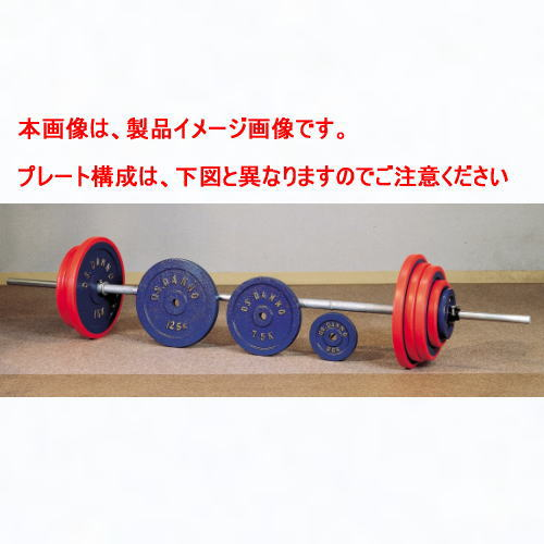 DANNO ダンノ C型バーベル 100kgセット[φ28mm/200cm/10kgシャフト]D-767