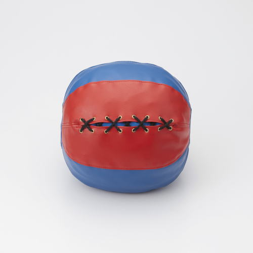 DANNO ダンノ ソフトメディシンボール 2kg 直径24cm D-5260