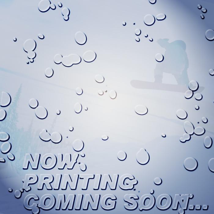 ダイス ゴーグル 19-20 DICE HIGH ROLLER NAV(104) POLARIZED GRAY/MIT BLUE HR90893NAV ジャパンフィット 日本正規品
