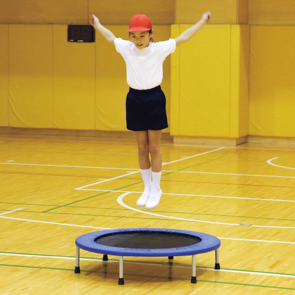 エバニュー(Evernew)学校体育器具ジャンピングキャンバス102ETE183