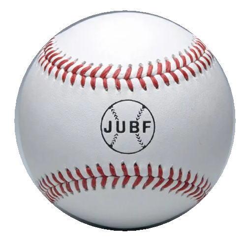 MIZUNO(ミズノ) 硬式用 ビクトリー 大学試合球(JUBF) 1ダース入 1BJBH11000