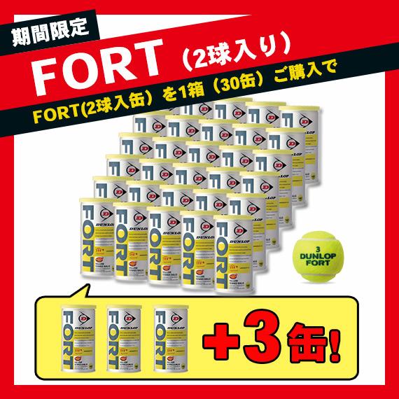 【テニス ボール ダンロップ】 増量キャンペーン FORT(フォート)/『2球入×30缶』+『2球入×3缶』(DFGYL2CS66)