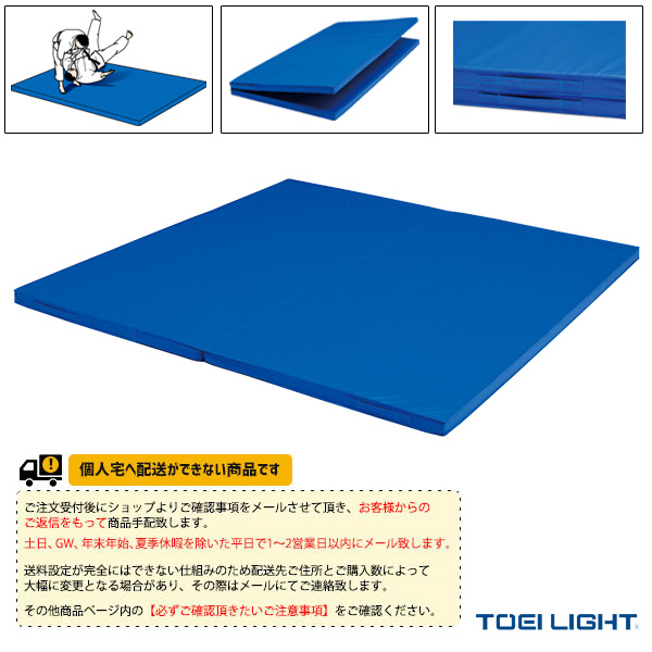 【体育館用品 設備・備品 TOEI(トーエイ)】 [送料別途]二つ折り投込み練習マット2×3(T-1832)
