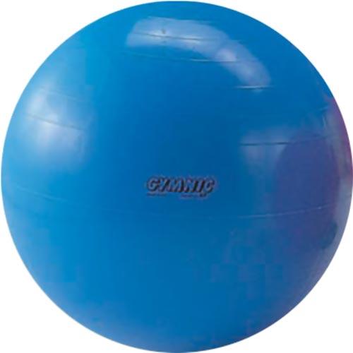 バランスボール エクササイズボール ギムニクカラーボール 95cm D5435 ヨガボール リラックス 体幹 エクササイズ トレーニング リハビリ ウエルネス イタリア製