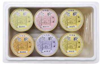 乳蔵 北海道アイスクリーム10個 期間限定 110007 バーゲンセール 132W063 4932371013326 メーカー在庫限り 沖縄 離島配送不可 ※北海道