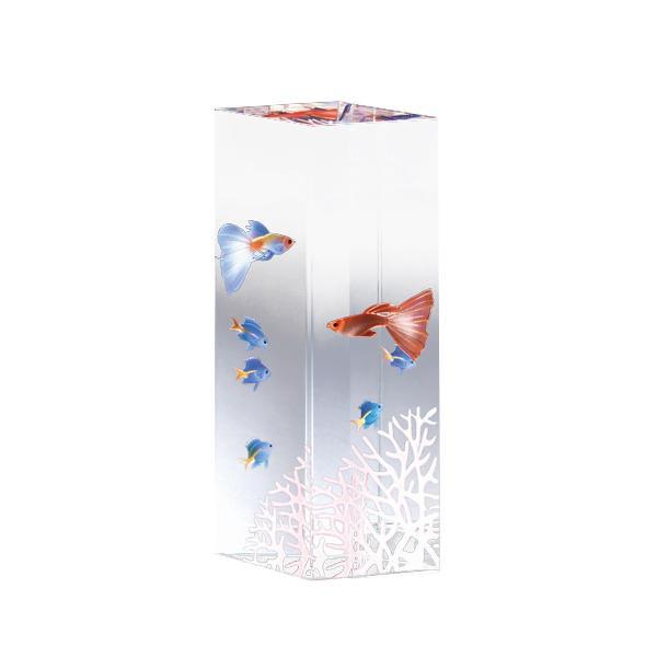便利雑貨 クリスタルファンタジー 熱帯魚 CF-I-F
