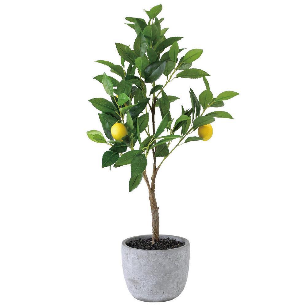 日用品 便利 ユニーク フェイクグリーン レモンツリー TADY9010