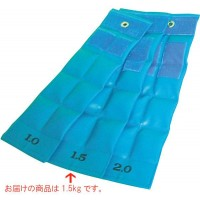 便利雑貨 ファーストレイト FR 重錘バンド(14×45cm) 1.5kg ライトブルー E-912