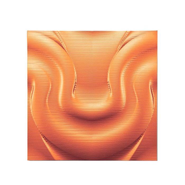 便利雑貨 プラデック ウォール アート ビラボン(メタルオレンジ) PL-16512