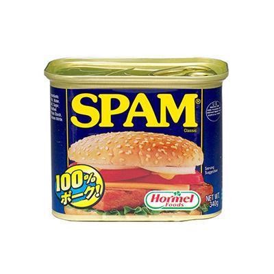 日用品 便利 ユニーク 肉・肉加工品 ホーメル スパム レギュラー 340g×24個/ホーメル社の有名なスパム