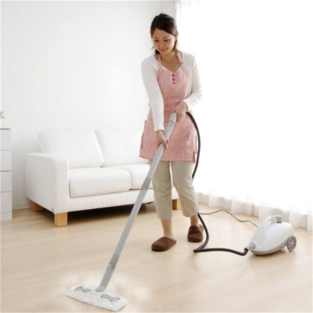 スチーム洗浄機 清掃 掃除 キャニスタータイプ スチームクリーナーキャニスタータイプ ホワイト