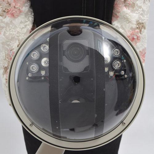 スピードドームジョイスティック付防犯カメラシステム STSPDM54