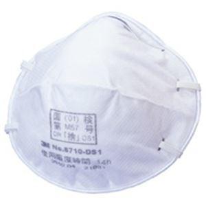 日用品・生活雑貨 関連 防じんマスク 8710-DS1Z