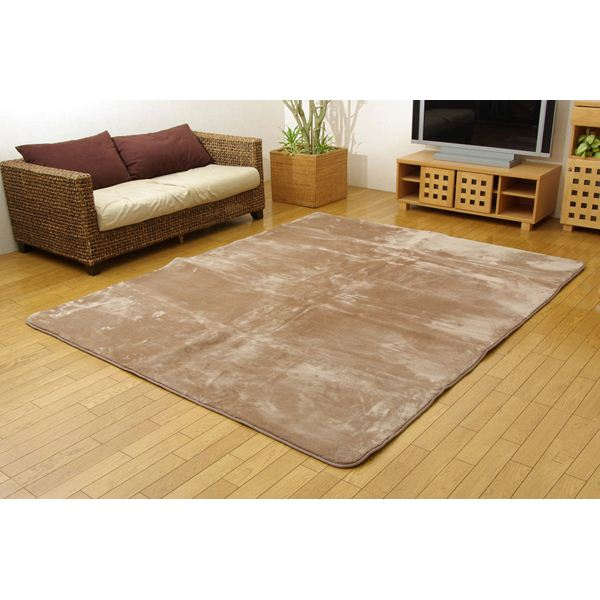 インテリア・家具 洗える ウォッシャブルラグカーペット 『WSウェンデルNSK』 ベージュ 200×250cm