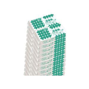(まとめ)バガスターキッチンペーパーeタイプ 100枚入×50パック
