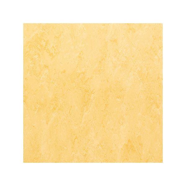 インテリア・寝具・収納 関連 東リ ビニル床タイル フェイソールプルス サイズ 45cm×45cm 色 FPT2022 14枚セット【日本製】