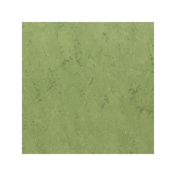 インテリア・寝具・収納 関連 東リ ビニル床タイル フェイソールプルス サイズ 45cm×45cm 色 FPT2032 14枚セット【日本製】